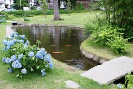 Backyard Ponds Backyard Fish Farming Raise Fish In Your Home Pond Worldwide
