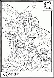 On Fairy And Dragon Coloring Pages Best Coloring Pages Collection