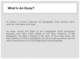 unit exploring the essay what is