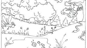 Coloring Pages For Creation Days Of Creation Coloring Pages