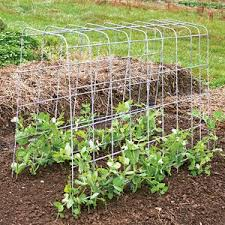 Small Picture 102 best Trellises images on Pinterest Garden trellis Gardening