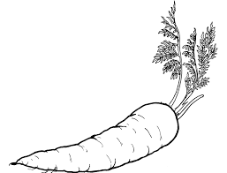 Small Picture Carrots Coloring Page of Vegetables carrots and vegetables