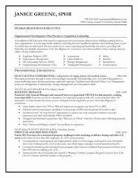 Team Skills Resume Team Leader Resume Example Inspirational Resume Job Summary