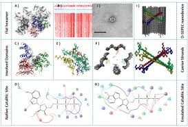 De Novo Enzyme Design Using Rosetta3 Enzyme Catalytic Activity Emulated Within Dna Based