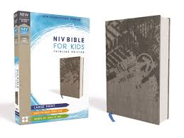 niv for kids large print cloth over board gray red
