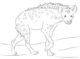 Gevlekte Hyena Kleurplaat Gratis Kleurplaten Printen