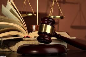 Dreptul la imagine al persoanei juridice - Bihor Just