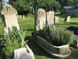 plants grow in graves at woodlands cemetery philadelphia