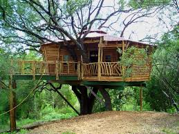 Simple Tree Houses For Kids  Simple Tree Houses To Build For Kids Treehouse For Free