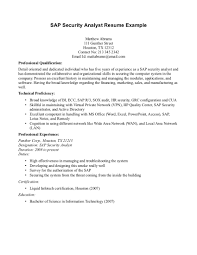 Sap Security Analyst Resume sap security analyst resume Ninjaturtletechrepairsco 1