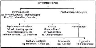 essay on drugs definition classification and moral implication psychotropic drugs