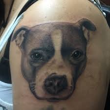 Tattoo Uploaded By Enrique Ortega Portrait Of My Clients Pitbull