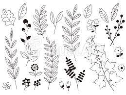 線画の植物の素材集イラスト No 472070無料イラストならイラストac