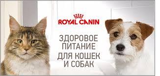 <b>Royal Canin</b>: <b>Роял Канин</b> зоотовары в СПб по выгодным ценам ...