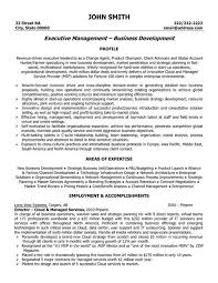 Fine Decoration Executive Resume Format Example Executive Resume