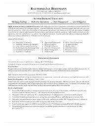 Mortgage Loan Officer Resume Best Of 44 Mortgage Loan Ficer Resume