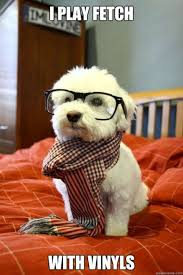 Cutest-hipster-dog-ever-W630.jpg via Relatably.com