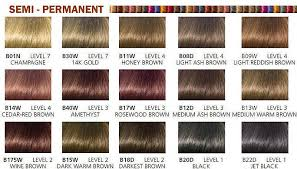 Clairol Beautiful Collection Semi Permanent Hair Color 3 Oz