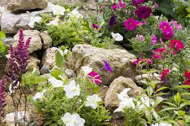 Small Picture Rock Garden Design Ideas Guide PRO Tips INSTALL IT DIRECT