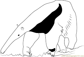 Small Picture Ant Bear Coloring Page Free Anteater Coloring Pages