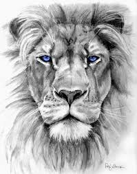 realistic lion face drawing.  Drawing Lion Drawing Pic With Realistic Face I