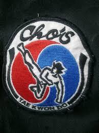 Image result for tyrrelstown taekwondo