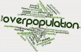 causes of overpopulation essays