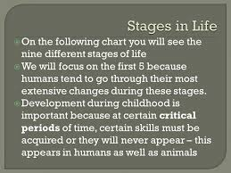 Studies The Way A Childs Behaviour Changes As The Child