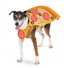 Rubies Dog Costume Size Chart Rubies Pizza Slice Pet Costume Large 883028144747