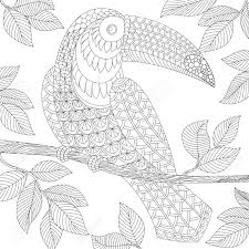 Toucan. Adult Antistress Coloring Page. Black And White Hand ...