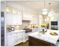 Small Picture Plain White Kitchens With Appliances Cabinets A Mistake Houzz In