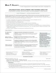 Great Sample Resume Excellent Resume Template Successful Resume Templates Career Summary