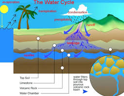 Water filter diagram for kids Bio Carbon Cycle Diagram Kids On Back Of It Draw This Water Definition Biology Stiitch Students Teachers Innovation Incubation For Technologies Diagram Carbon Cycle Diagram Kids On Back Of It Draw This Water