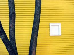 architecture yellow. yellow wooden house with trees architecture e