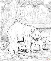 American Black Bear Family Coloring Page
