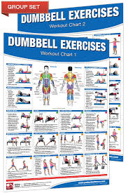 Dumbbell Workout Poster Chart Set Productive Fitness