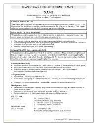 Template Resume Word New Customer Service Template Studiorcco