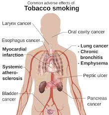 everything you need to know about nicotine and tobacco abuse harmful health effects of cigarette smoking