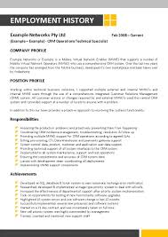 Information Technology Resume Template 055