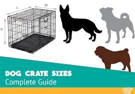 Bluetick Coonhound Size Chart Choosing The Right Dog Crate Size The Definitive Guide