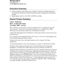 sample one page resume proposal executive summary examples    executive summary resume tlufb lt