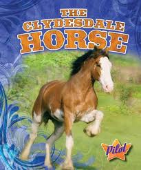 pin by just horse crazy on clydesdale horse gifts clydesdale horses clydesdale and horses