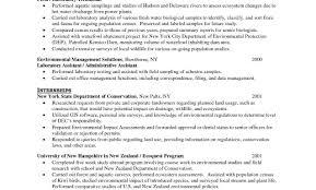 Automotive Technician Resume Great Gis Technician Resume Sample Pictures Inspiration Resume 99