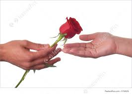 male hand giving a rose to a female hand
