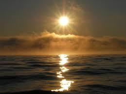 Image result for the sun in the sky