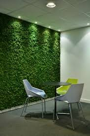 green wall office. Along With All The Benefits Of Nordik Moss, Such As Being Maintenance Free And Absorbing. Moss WallGreen OfficeOffice Green Wall Office .
