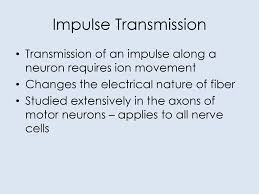 Image result for electric impulses to transmit