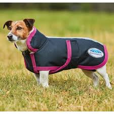 parka 1200d deluxe dog coat black boysenberry