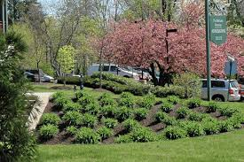 Steep hill landscaping Erosion Control Awesome Hill Landscaping Ideas Landscape Design For App Ideas For Landscaping Small Hill Garden Decors Best Hill Landscaping Ideas 1000 Images About Steep Hill Garden On
