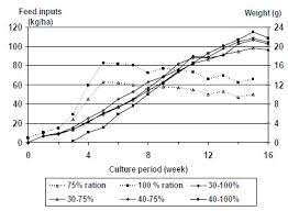 Current Culture Feeding Chart Feed Management For Improving Production Economic Returns